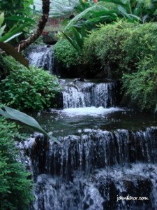 Small waterfall @ Penang Butterfly Farm