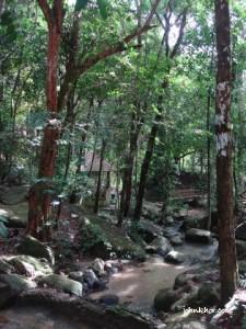 A small stream of river @ Taman Rimba Teluk Bahang Penang