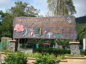 Taman Rimba Teluk Bahang Entrance
